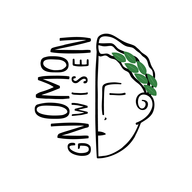 Gnomon Wise -ის საქმიანობის ანგარიში 2020